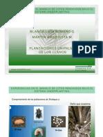 Experiencias en El Manejo de Lotes Renovados Con El Sistema Under Planting [Modo de ad