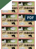 Schafe Flyer