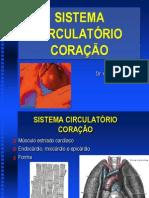Aula Sistema Circulatorio Coracao