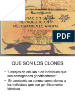 13 W Vivanco-Clonacion Animal