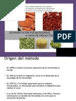 Deshidratacion Por Micro on Das a Vacio de Productos Vegetales