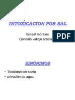 INT_POR_SAL_2011