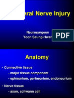 07_peripheral Nerve Injury