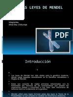 lasleyesdemendel1-101023183416-phpapp0