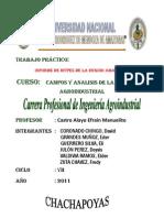 MyPES de La Region Amazonas - Informe de Campos II Unidad