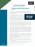 File Doha Brief Final