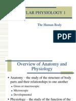 Celular Physiology 1