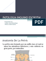 Patologia Inguino Escrotal Final2