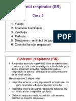 c5 Aparatul Respirator