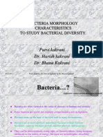 Bacterial Diversity