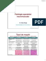 Curs 2 Fiziologia Aparatului Neuromuscular
