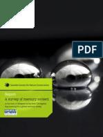 Report - A survey of mercury content