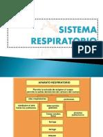 aparato-respiratorio-091007190041-phpapp02