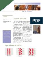 Ao Po'i - IPA - Volumen 2, Nº 2 - PortalGuarani
