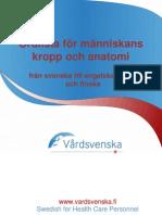 Swedish Human Body and Anatomy Glossary