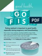 Pregnancy Flyer
