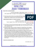 HaAzinu - Selections from Rabbi Baruch Epstein
