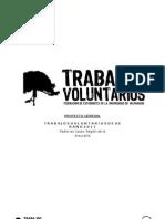 (2) proyectogeneraldetrabajosvoluntariosdeverano-padrelascasas2010