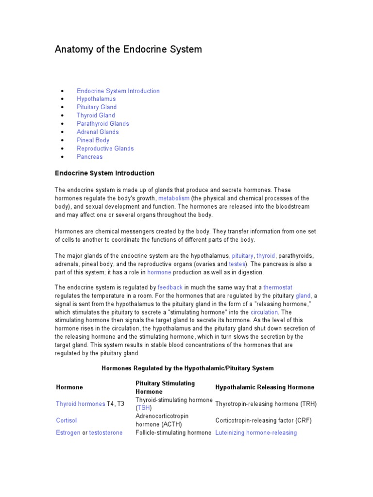Anatomy Of The Endocrine System Hormone Endocrine System