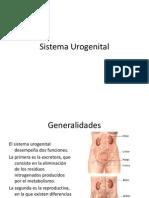 Sistema Urogenital[1]