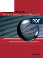 IDC Report 2006 FNL on Domestic Services Market Opportunities