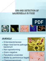Isolation and Detection of Salmonella in Food