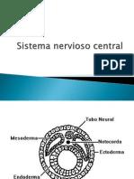 Sistema Nevioso Central