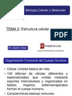TEMA 2fisio