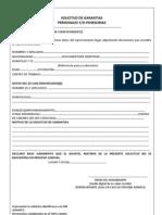 formato nuevo directiva 03-2011