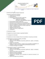 Modelo Programa Salud Ocupacional