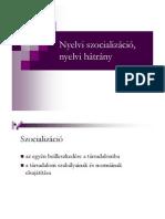 Nyelvi szocializáció