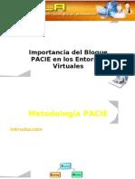 Bloque - PACIE