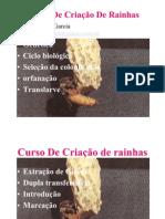 Curso De Cria€¦ção De Rainhas