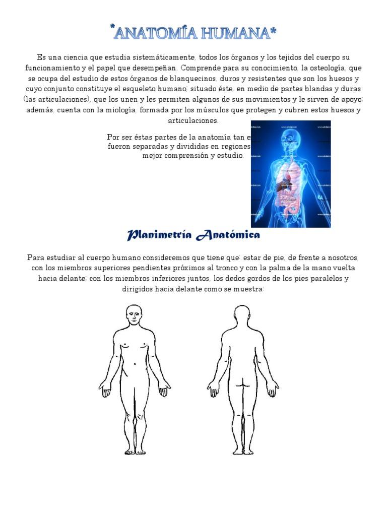 Generalidades de la anatomía humana