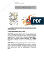 APOSTILA sinapse - UNESP
