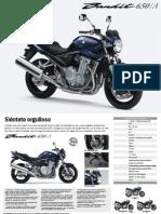 Folleto_GSF650_K8