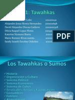 Los Tawahkas o Sumos
