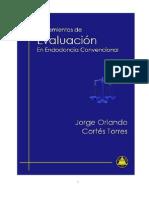 Cortes Torres Jo Lineamientos Evaluacion 2009