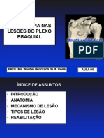 fisioterapianaslesesdoplexobraquial-091006085120-phpapp02