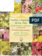 Plantas y Vegetacion de ICA, PERU