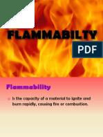Flammability.presentation