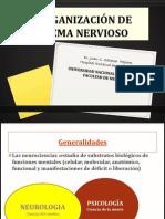 1-Organización SN-2011