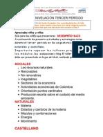 PLAN DE TRABAJO DE NIVELACIÓN TERCER PERIODO