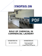 Role of Chemical in Commercial Laundry.doc Proposal