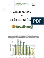 PresentacION ALGAENZIMAS