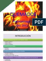"""Vista previa de """"clase quemados 2009.pptx"""""""