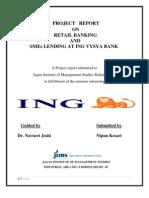 Retail Banking and Sme Lending at ING VYSYA BANK
