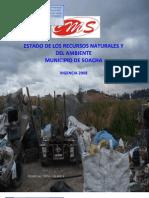 Informe Ambiental Cms 2008