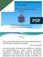 Principios Rectores Del Proceso