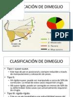 CLASIFICACIÓN DE DIMEGLIO
